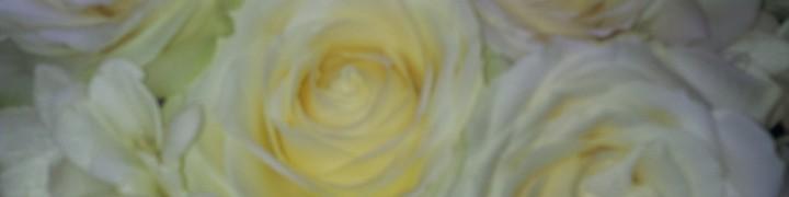 20140428_160855