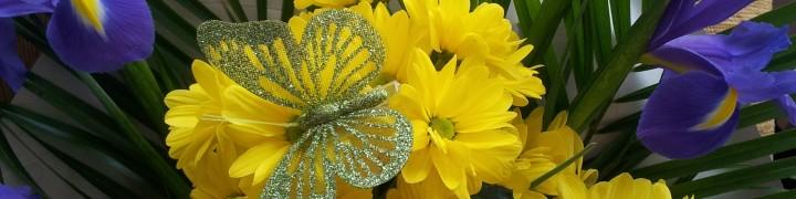 foto flori 133